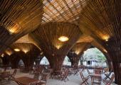 bambu tratado antes usar