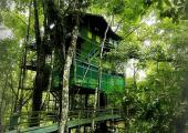 hotel brasil ubicado selva amazonica