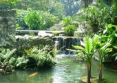 jardines maravillosos cerca hotel