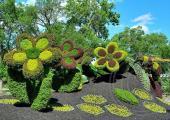 jardin montreal plantas del mundo