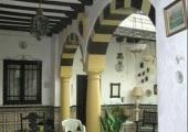 patio tradicional casa andaluza