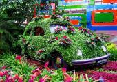 coche cubierto flores jardin botanico